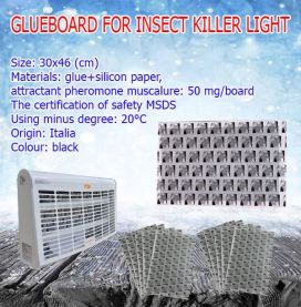 GLUEBOARD FOR FLYING KILLER LIGHT
